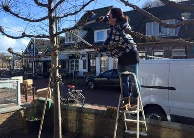 Helpende handjes bij de verbouwing De Moerbei Texel